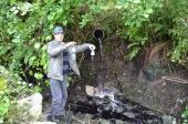 Ambientalista acusa tinturaria de poluir Rio Vizela