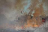 Área ardida em Fafe aumentou 865%