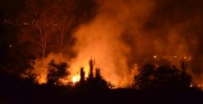 Incêndios florestais fora de época