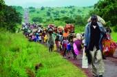Fafe disponibiliza-se para receber refugiados